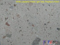 White Leopardi - China Light Grey Porphyry